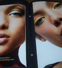 makeup to go blog makeup los angeles makeup san francisco tania d russell so you wanna be a pro makeup artist copyright tania d russell mtgtdrportbuildingavi