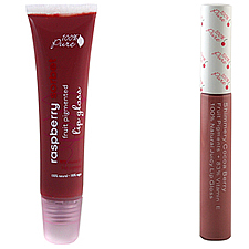 makeup to go blog makeup los angeles makeup san francisco makeup lessons 100 percent pure lip gloss favorite lip glosses 2012