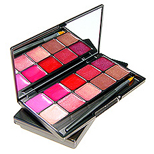makeup to go blog makeup los angeles makeup san francisco makeup lessons three custom color perfectly pink palette favorite lip glosses 2012